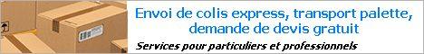 « expedeasy.com » trouvez le meilleur devis transport international de colis ou palette, comparateur services d'envoi en france et à l'étranger.